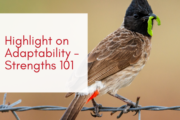 Highlight-on-Adaptability-Strengths-101